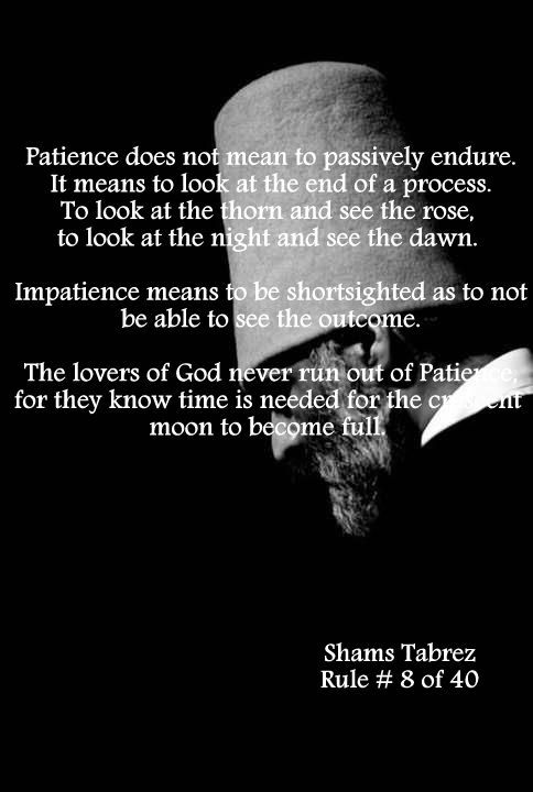 what patience means