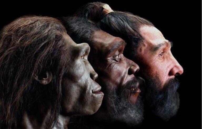 Evolution Of Modern Humans Documentary 2017